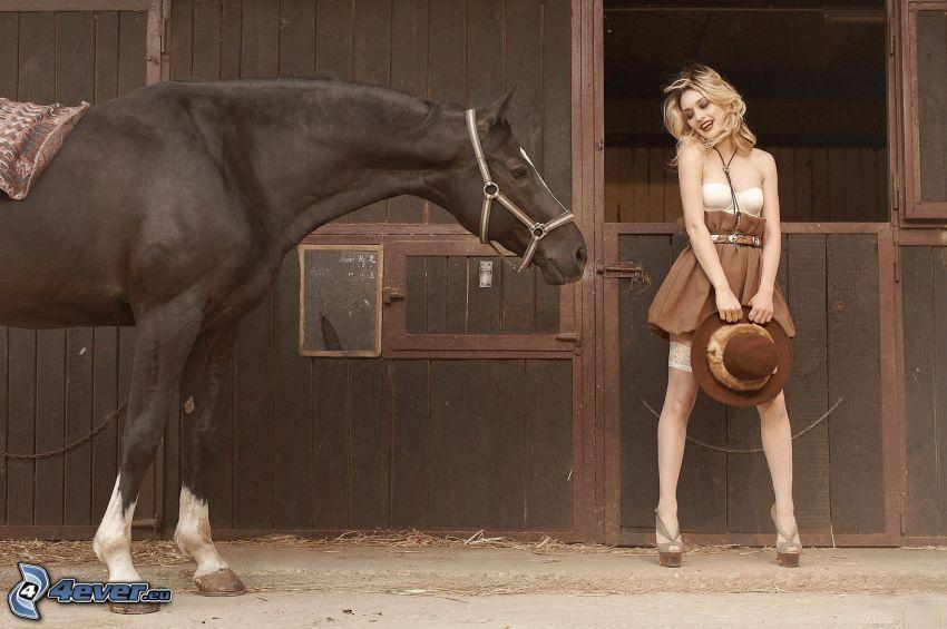 cavallo marrone, scuderia, bionda sexy