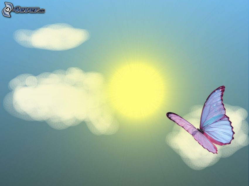 farfalla, sole, nuvole