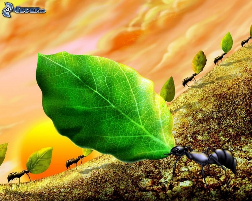 formiche, foglie verdi, cartone animato