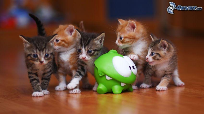 gattini, giocattolo