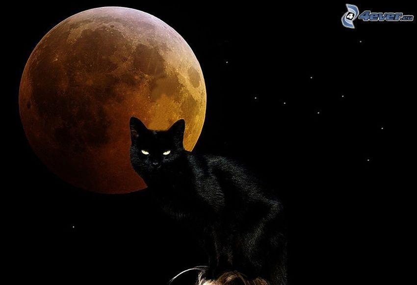 gatto nero, luna piena, Mese arancione, stelle