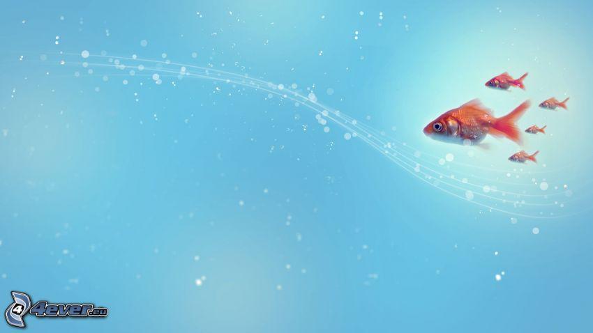 pesci, linee