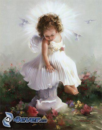 angelo, piccione, aureola