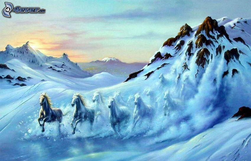 cavalli bianchi, neve, montagne, valanga