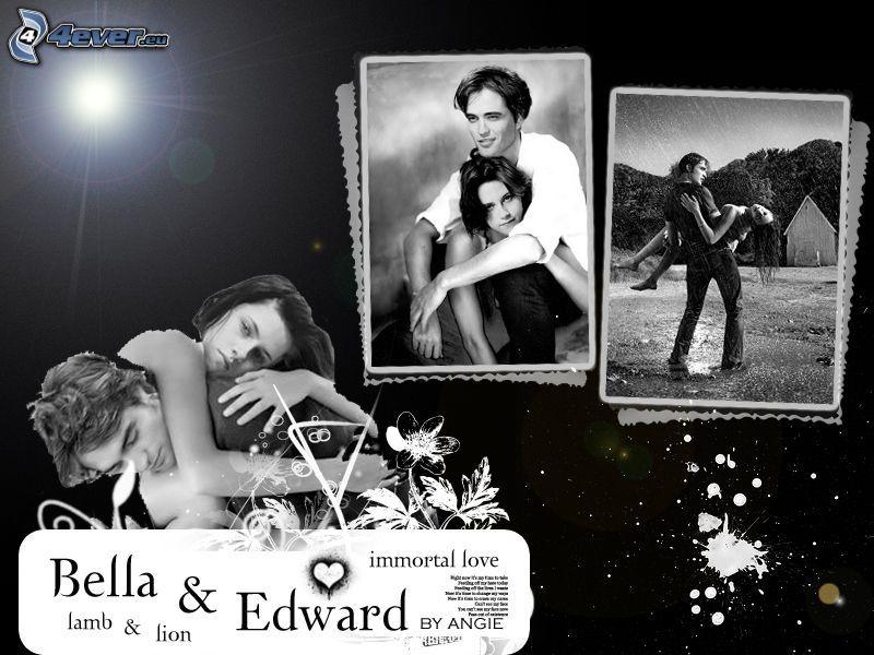 Bella & Edward, Twilight