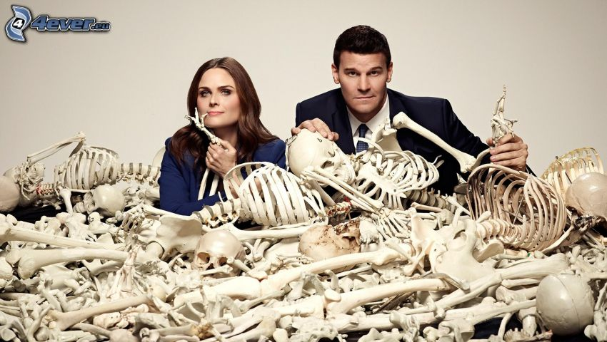 Bones, Emily Deschanel, Seeley Booth, David Boreanaz, scheletri