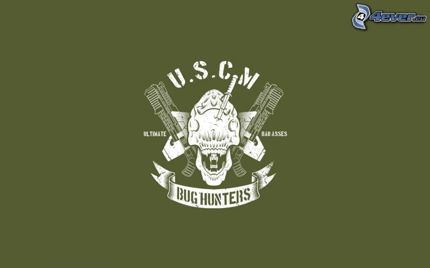Bug Hunters, logo