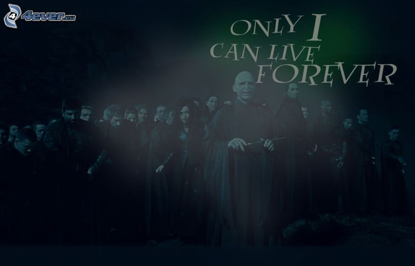 Harry Potter, Lord Voldemort