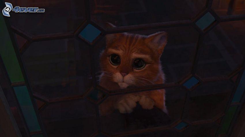 Il gatto con gli stivali, Shrek, sguardo