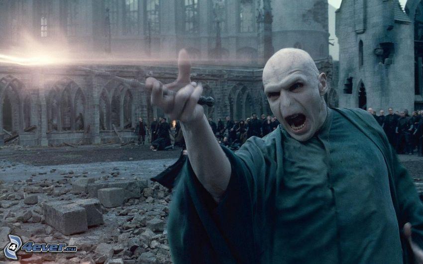 Lord Voldemort, stregone, Harry Potter