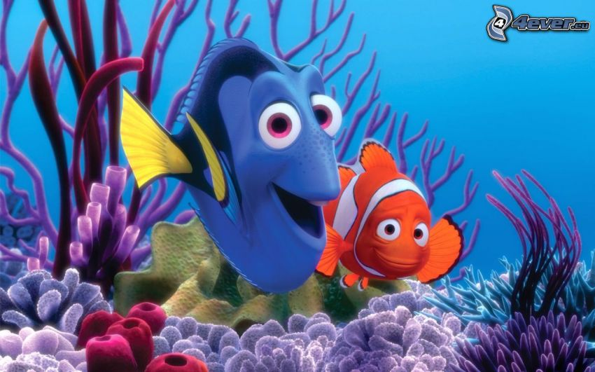 Nemo, Marlin & Dory