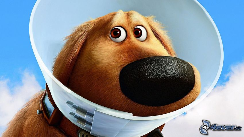 Up, Fiaba, cane disegnato