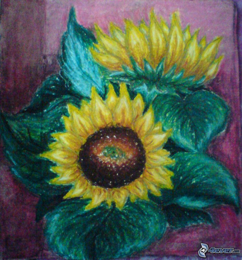 girasoli, fiori disegnati, natura morta