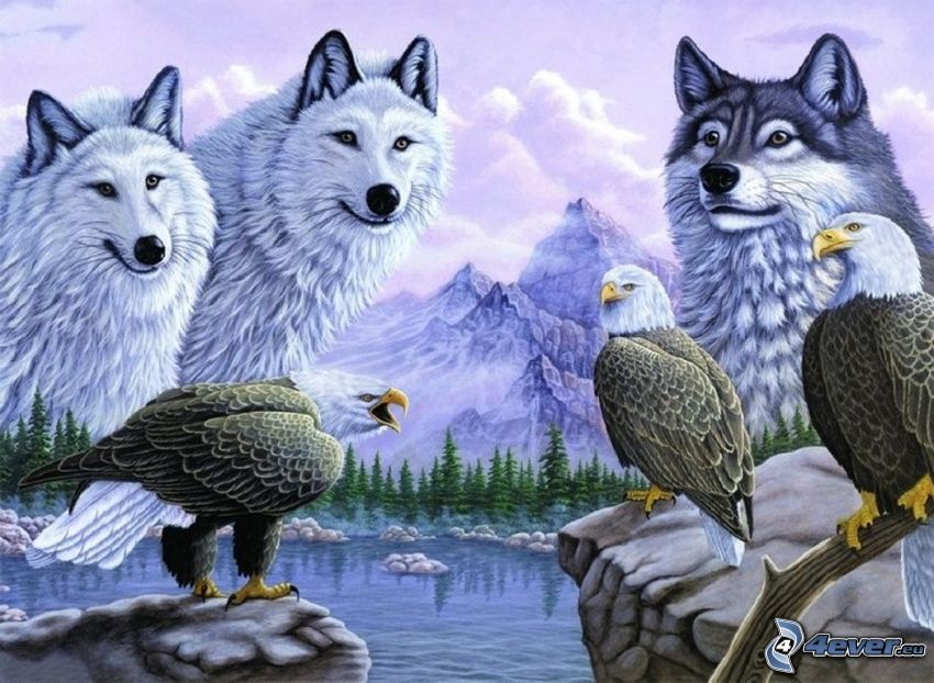 montagne, lupi bianchi, aquila, lago