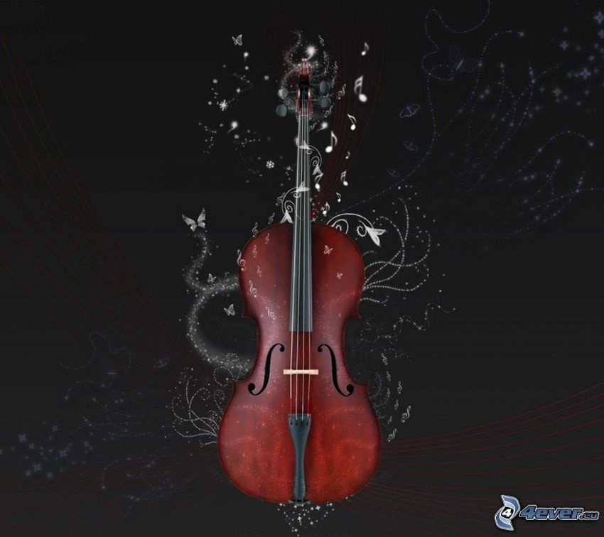 violino, farfalle, linee bianche