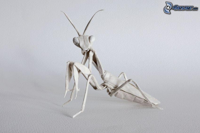 origami, mantis religiosa