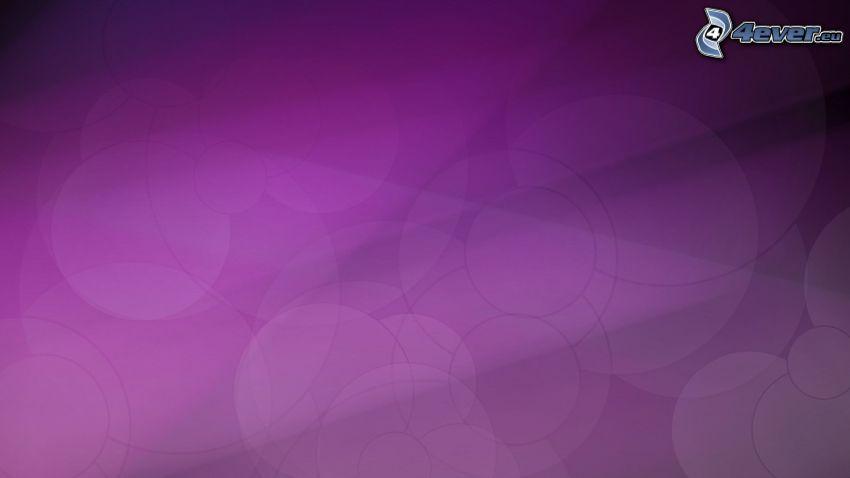 cerchi, sfondo viola