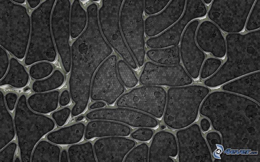 forme astratte, cellule
