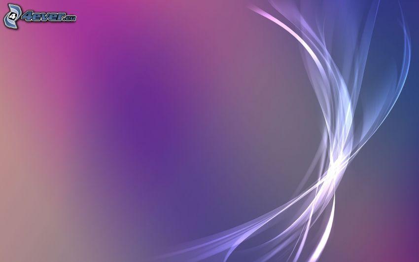 linee bianche, sfondo viola