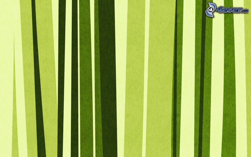 linee verdi