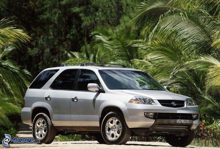 Acura MDX, palme