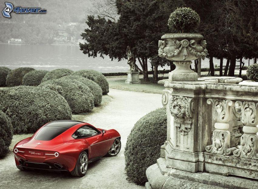 Alfa Romeo Disco Volante, concetto, arbusti, alberi