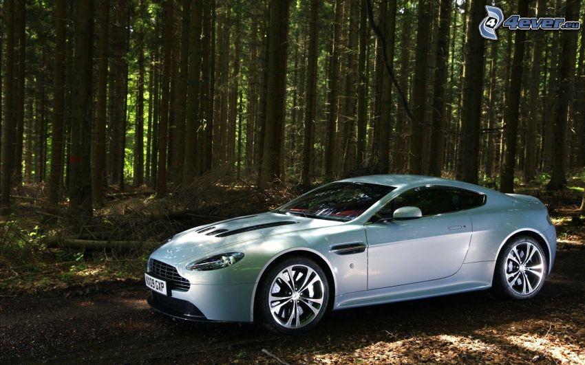 Aston Martin V12 Vantage, foresta