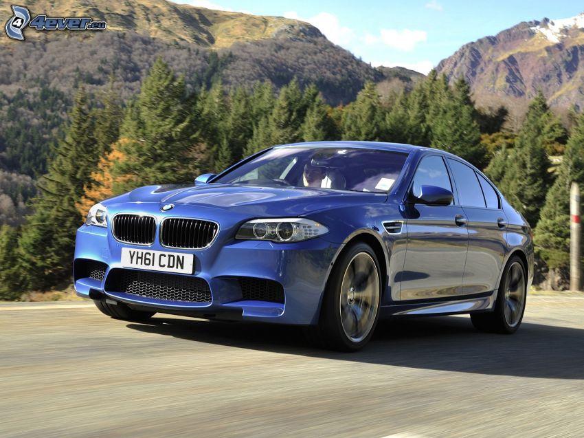 BMW M5, foresta, colline, velocità