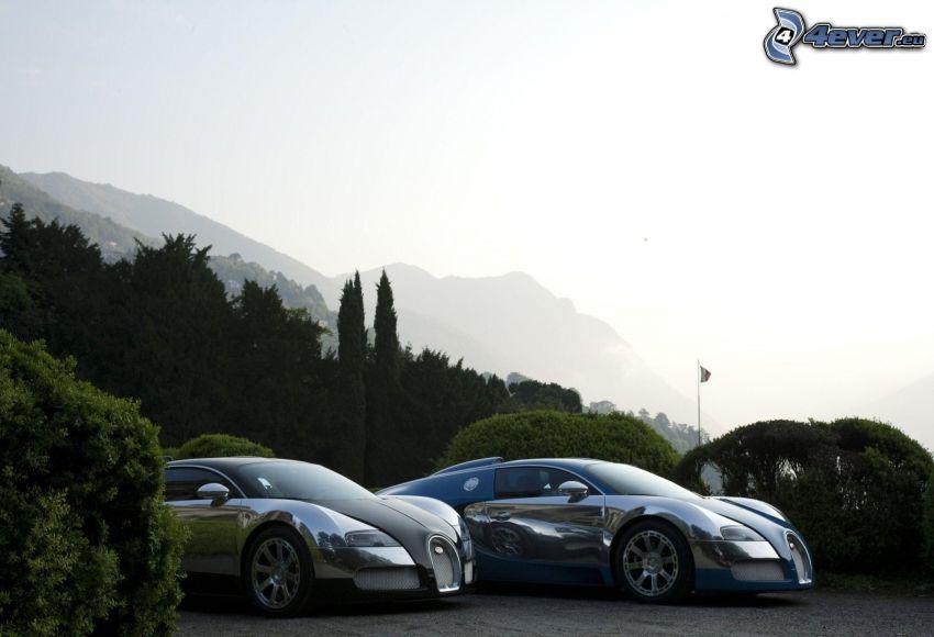 Bugatti Veyron, arbusti