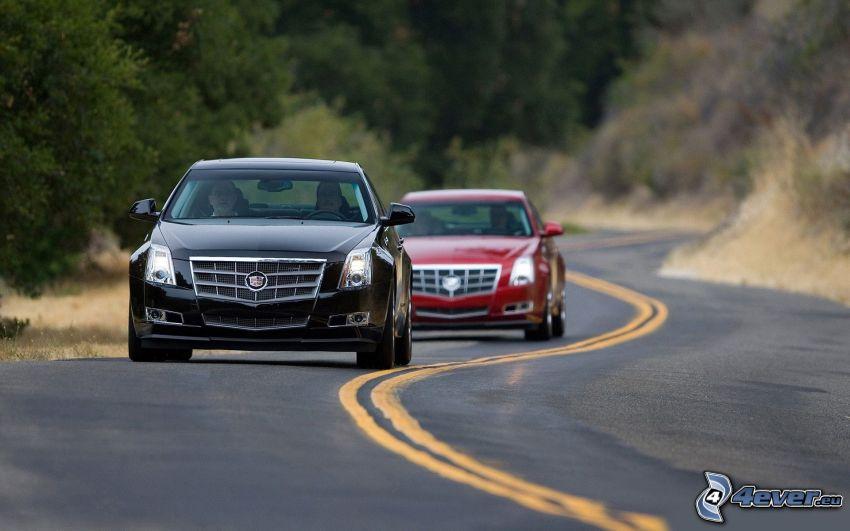 Cadillac, strada, curva