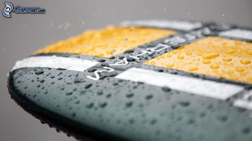 Caterham F1, gocce d'acqua