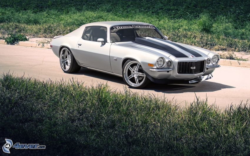 Chevrolet Camaro, veicolo d'epoca, l'erba