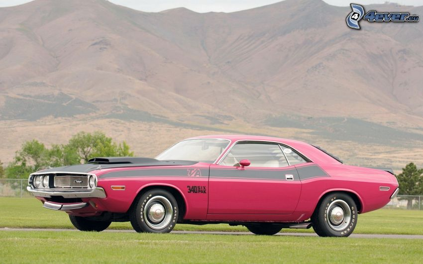 Dodge Challenger, montagne, veicolo d'epoca