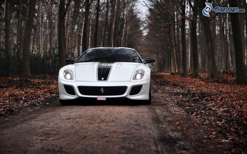 Ferrari 599 GTO, strada forestale