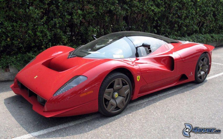 Ferrari P45, siepe