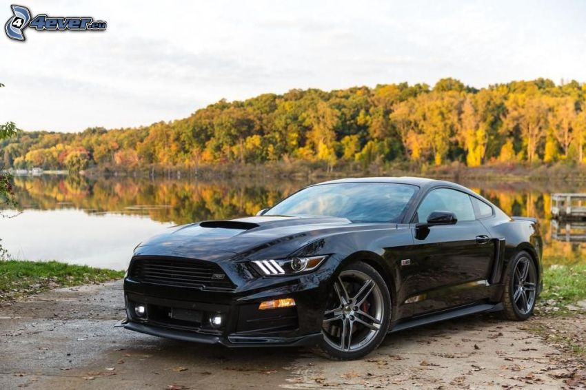 Ford Mustang Giugiaro, alberi colorati d'autunno, lago