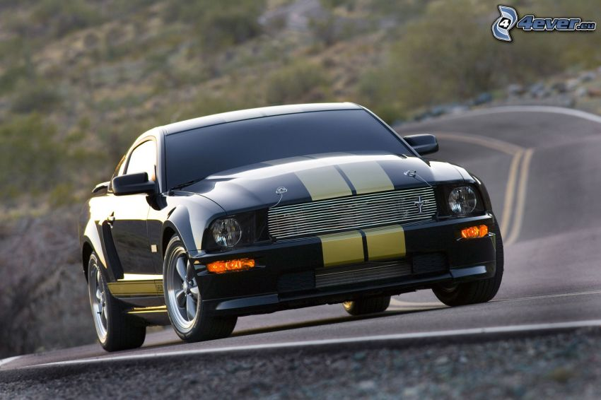 Ford Mustang Shelby, strada