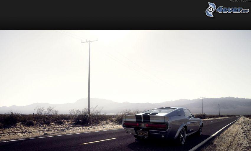 Ford Mustang Shelby, veicolo d'epoca, strada diritta