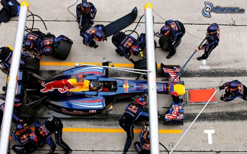 Formula 1, meccanico
