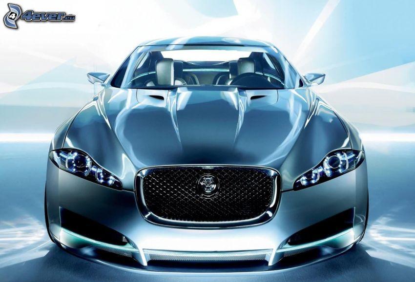 Jaguar, griglia anteriore