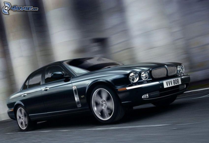 Jaguar, velocità