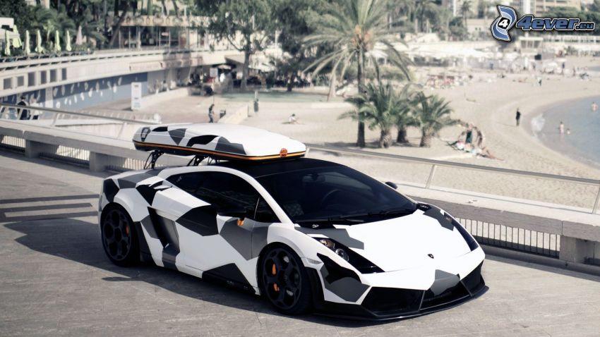 Lamborghini, spiaggia, mascheramento