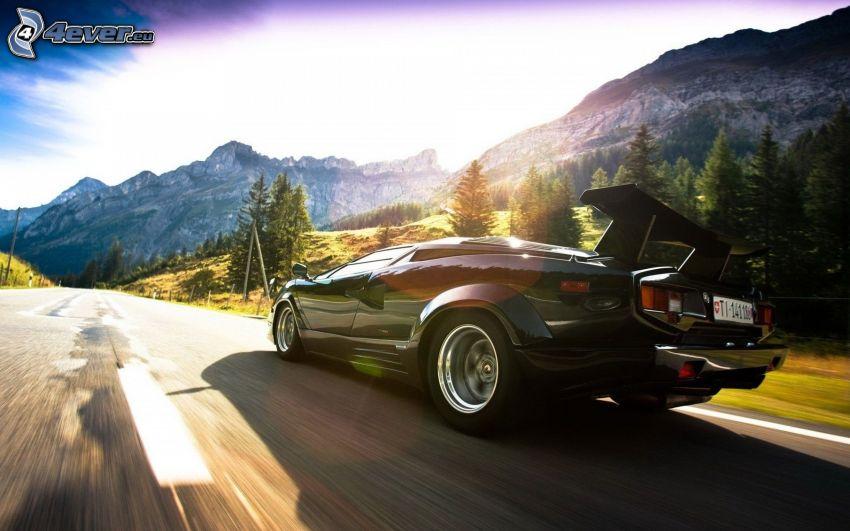 Lamborghini Countach, velocità, montagne rocciose, alberi di conifere