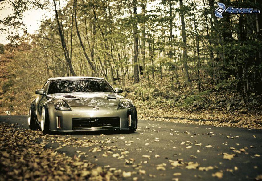 Nissan 350Z, il percorso attraverso il bosco, bosco autannale