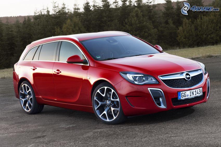 Opel Insignia OPC, bosco di conifere