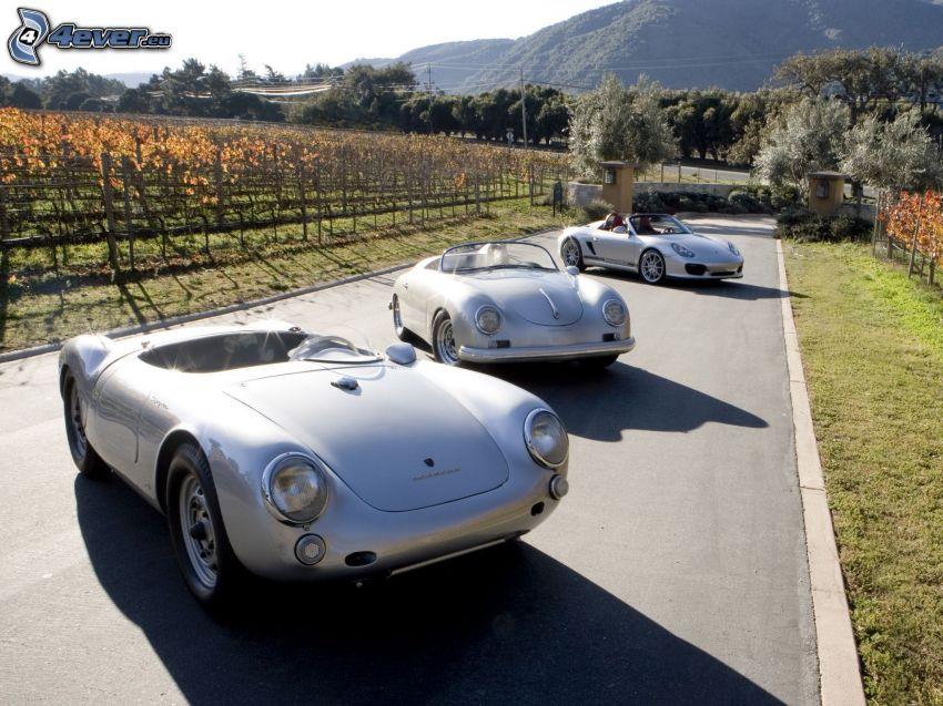Porsche 356, Porsche, Porsche Boxster Spyder, veicolo d'epoca, cabriolet, vigneto