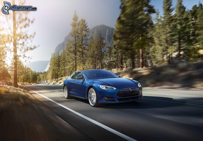 Tesla Model S, foresta, rocce, velocità