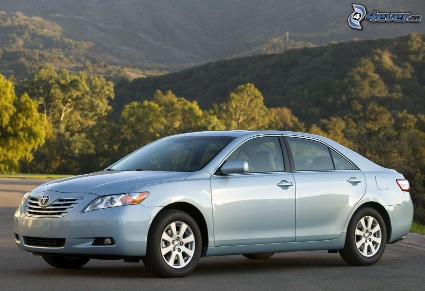 Toyota Camry, colline, alberi
