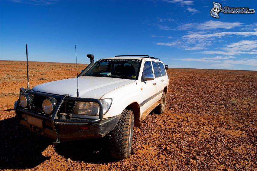 Toyota Land Cruiser, deserto