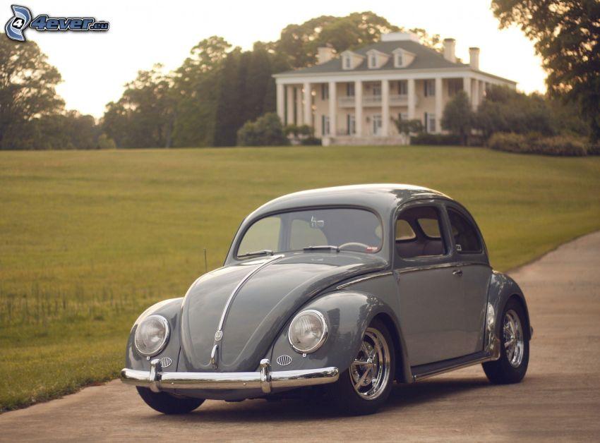 Volkswagen Beetle, veicolo d'epoca, casa, prato